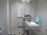 Клиника Волгоградский ветеринарный центр хирургии и травматологии, фото №5