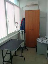 Клиника Дзержинская ветеринарная лечебница, фото №5